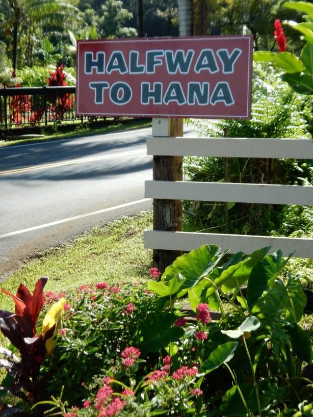 Near a fruit stand halfway to Hana