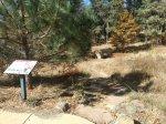 Kwaaymii Trail trailhead labeled Indian Trail